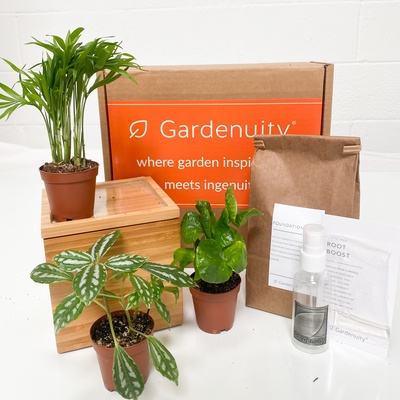 Tropical Garden in Bamboo Planter
