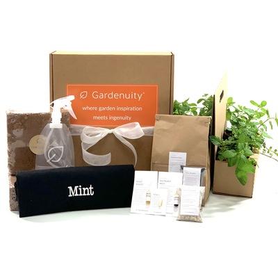 Giftable Mint Garden